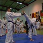 Sozialpädagogin, Dana Ehleiter als Referentin im Taekwondo